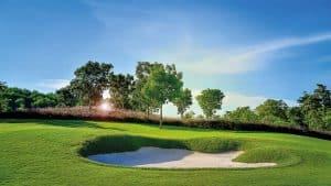 INOQ Mykorrhiza im Golf- und Sportplatzbau