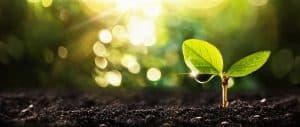 Génie écologique 2020